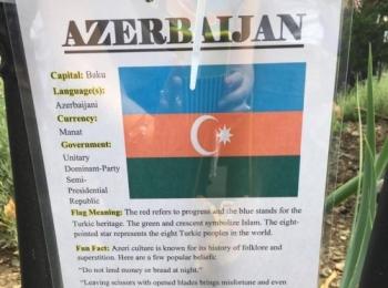Представители азербайджанской диаспоры приняли участие в праздновании Международного дня дружбы в Бруклине